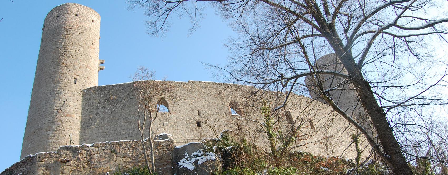 Ch-sous-la-neige2010